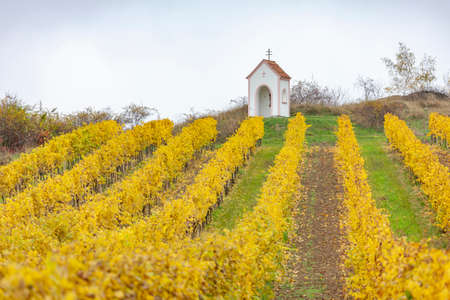 God's torture near Hnanice with autumnal vineyard, Southern Moravia, Czech Republic Standard-Bild