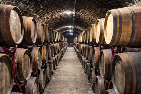wine cellars with barrels, traditional wine called Bikaver near Eger, Hungary