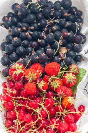 fresh summer fruit in the basket