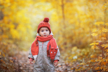 cute baby in autumn clothes. child in knitted hats and scarf. orange animal is fox.