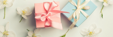 two gifts surrounded by Apple white flowers. blue and pink presents. gentle background top view.