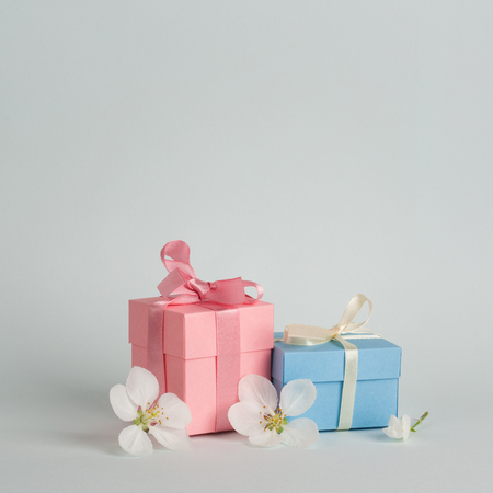 two gifts surrounded by Apple white flowers. blue and pink presents. pretty background.