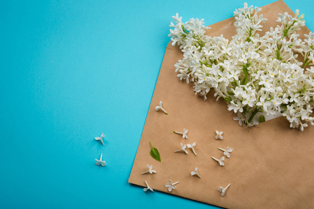 branch of white lilac the envelope with the letter on a yellow background. minimalism. 스톡 콘텐츠