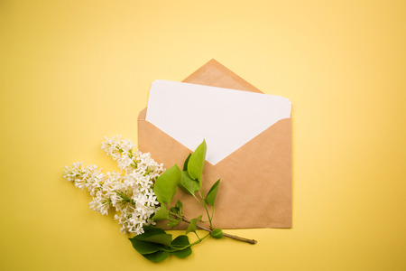 branch of white lilac and the envelope with the letter on a yellow background. minimalism.
