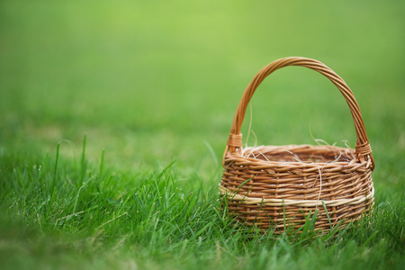 empty basket for berries, mushrooms or eggs on the grass. green lawn