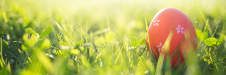 Easter eggs in spring grass in sun light. natural green background with selective focus. long banner.