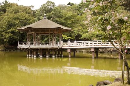 albero: japanese pavilion