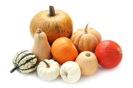 Varieties Of Pumpkin Isolated On White