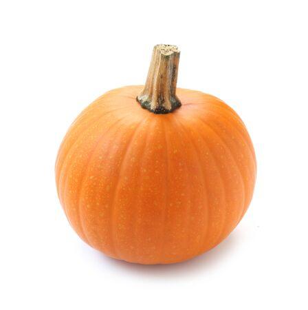 Sugar Pie Pumpkin Isolated On White 免版税图像