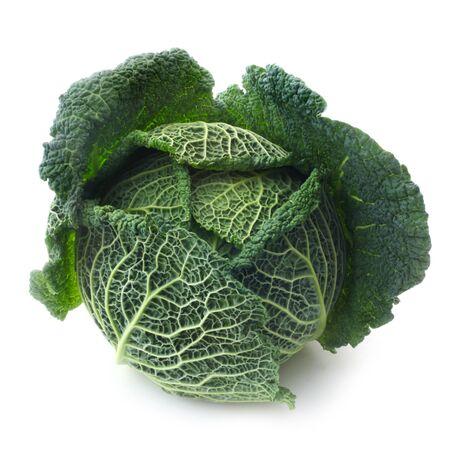 Savoy Cabbage Isolated On White Archivio Fotografico