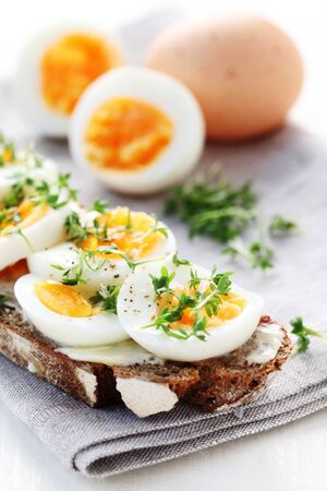Whole Grain Bread With Egg Slices