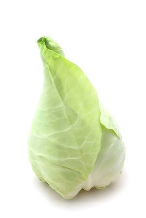 Raw Whole Oxheart Cabbage Isolated On White