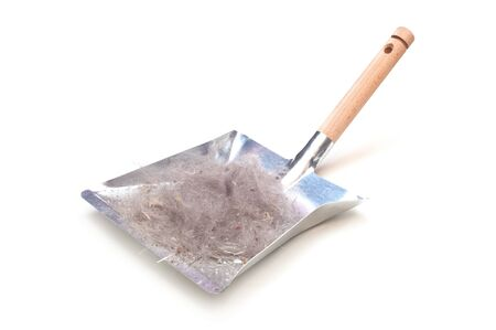 Metal Dustpan With Sweepings Isolated On White Stok Fotoğraf