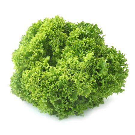 Lollo Bionda Lettuce Isolated On White Standard-Bild