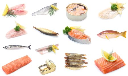 Collage Of Various Pieces Of Fish Isolated On White