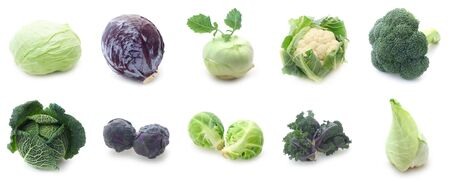 Collage Of Various Types Of Cabbage Isolated On White