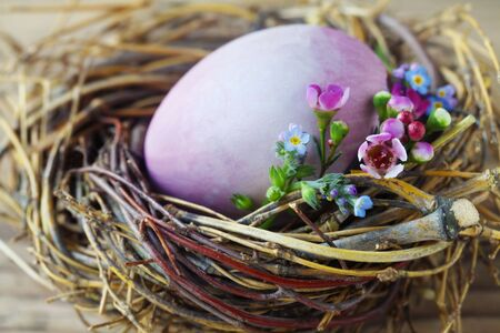 Easter Nest With A Purple Egg