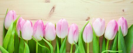 Pink Tulips On A Wooden Background 版權商用圖片