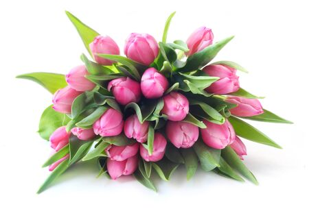 A Bunch Of Pink Tulips Isolated On White