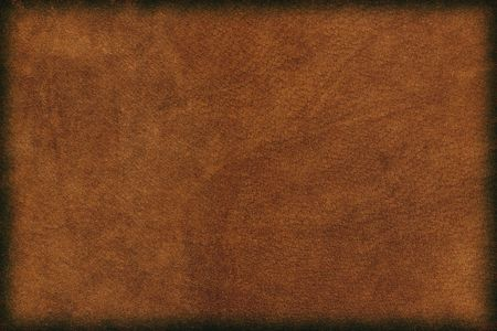 cowhide: Leather Background