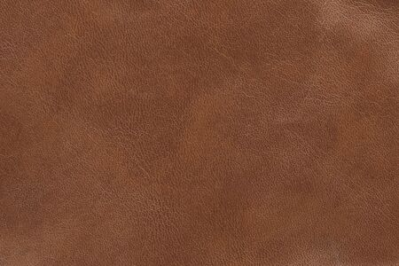 texturized: Leather Stock Photo