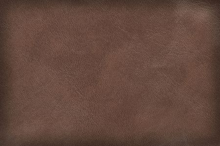 Brown leather texture. High-resolution scan. Stock Photo