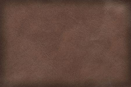 materia prima: Textura de cuero marr�n. De alta resoluci�n de escaneo. Foto de archivo