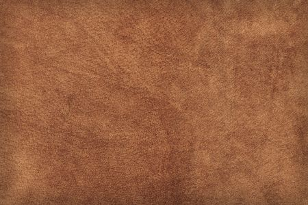 cowhide: High-res leather texture. (Brown suede  buckskin)
