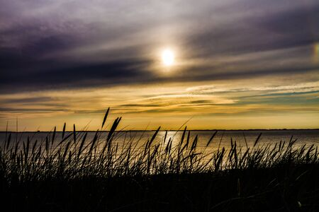 mosquitos: Nature with sunset over water, and a lots of mosquitos. Albuen, Nakskov, Denmark Stock Photo