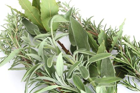 Rosemary, sage and bay leaves isolated on white