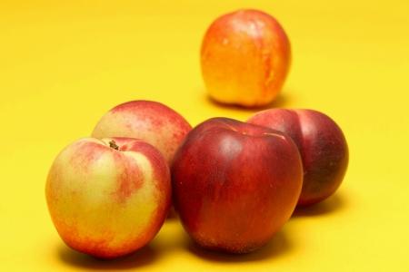 Nectarines on colored background Stock Photo - 20947571