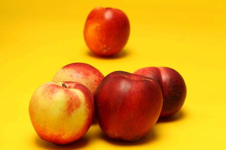 Nectarines on colored background Stock Photo - 20947572