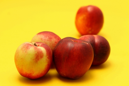 Nectarines on colored background Stock Photo - 20947577