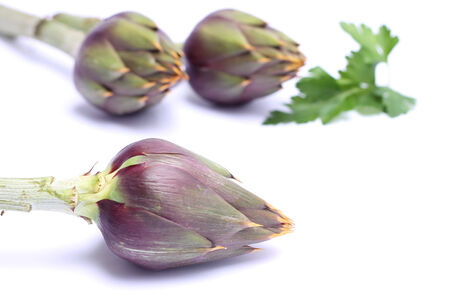 Raw spiny artichokes with parsley  isolated on white background