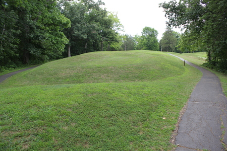 Inside the Serpent Mound park