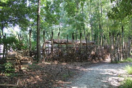 どうもこうした細石器と歴史的な村でモジュラー モノンガヒラ文化インドの村 写真素材