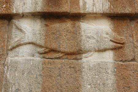 Gomateshwara 寺院、Vindhyagiri、Shravanbelgola で魚の壁の彫刻 報道画像