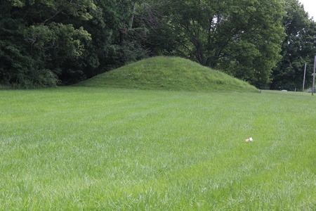 One of Twin Mound at the North Gate of Fort Ancient