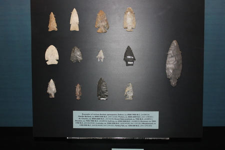 Collection of Arrowheads displayed at Fort Ancient Museum Редакционное