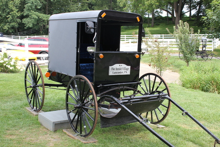 Traditional Amish Buggy exhibited in Amish