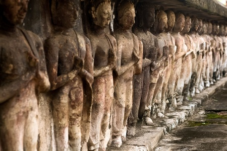 row of buddha statue photo