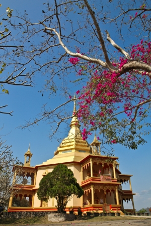 phon: A beautiful view Phon Phao pagoda in boomning season of the world heitage town of Luang Prabang