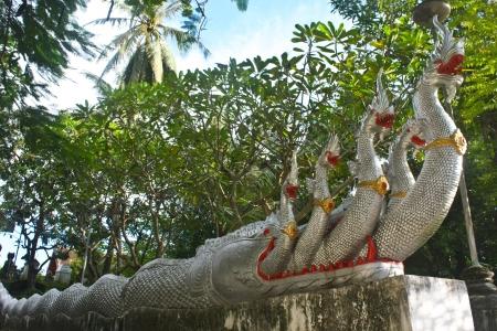 Naga at a temple photo