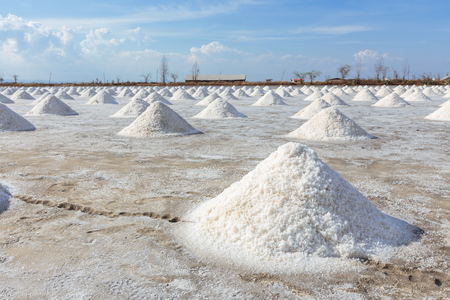 briny: Salt piles in the Saline