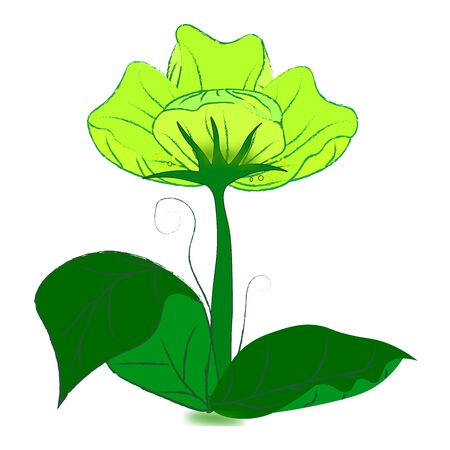 green it: green flower with leaves it all have green color
