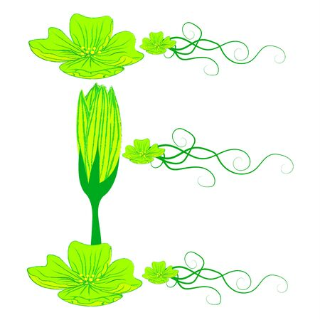 green it: font green flower E it all have green color. Illustration