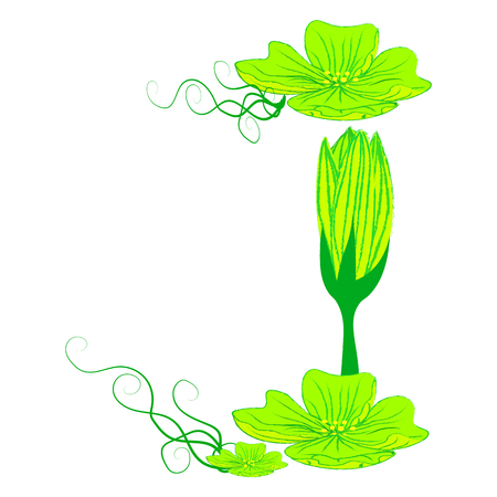 green it: font green flower J it all have green color.