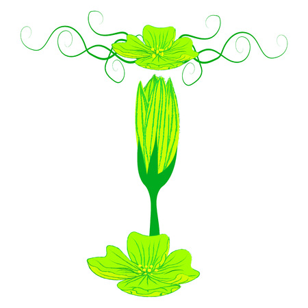 green it: font green flower T it all have green color.