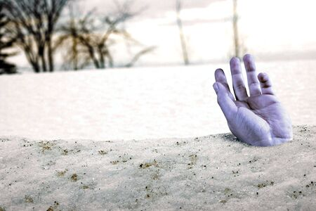 snowbank: A hand sticks out of a snowbank on a spring day.