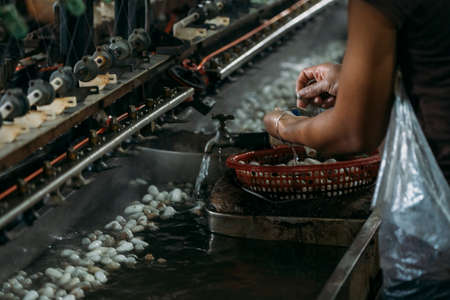 Close-up of silk worm factory processing silk worm cocoons with water sinks.